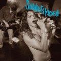 Soundgarden, un tuffo nel passato