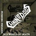 Chain Of Dogs: nulla di eccezionale nel pianeta folk metal