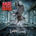 MR. BIG is back!