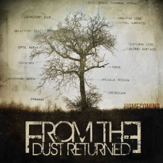 Esordio per i From The Dust Returned: quando l'abbondanza è troppa.