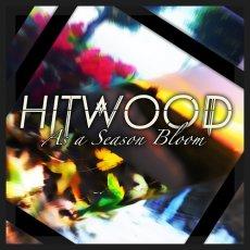 Hitwood: un progetto solista davvero interessante made in Italy