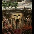 Death Metal e filmografia horror: le passioni dei Membrance si fondono nella proposta della band veneziana