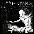 Tanta melodia e una discreta tecnica nel lavoro dei melodeathsters francesi Temnein