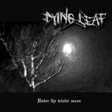 """Dying Leaf, il debutto """"tra epico e profano""""!"""