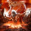 "I Brothers Of Metal e la ""fratellanza"""