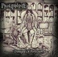 Tra le progressioni degli Opeth e le atmosfere malinconiche dei Katatonia il secondo album dei Proliferhate