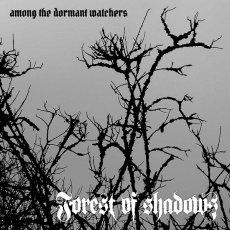 Tornano dopo dieci anni con un disco davvero ben fatto i Forest of Shadows