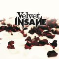 I Velvet Insane con un classic rock dalle tinte alternative ed emotive