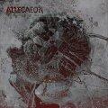 Gli Allegaeon tornano con un album semplicemente privo di difetti