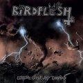 Mezz'ora di sano divertimento con il nuovo album degli svedesi Birdflesh