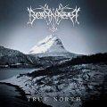 Borknagar: Il profondo nord risente di qualche melodia di troppo