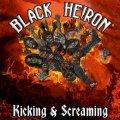 Più luci che ombre per il debutto dei Black Heiron!!!