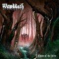 Quarto album (terzo dalla reunion) per i death metallers svedesi Wombbath