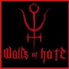Al netto di qualche difetto, incuriosisce l'EP d'esordio della one man band Walls of Hate