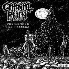 Un EP più che soddisfacente per gli statunitensi Carnal Ruin