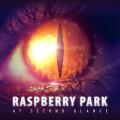 Un impatto melodico notevole per il melodic hard rock dei Raspberry Park