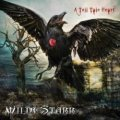 Non convince il secondo album dei Wildestarr