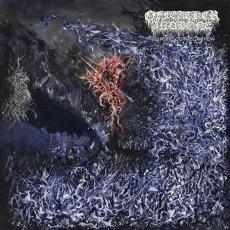 Gli Of Feather and Bone si candidano ad un ruolo di rilievo nella scena Death Metal