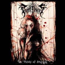 Luci e ombre nel quinto album dei The Projectionist