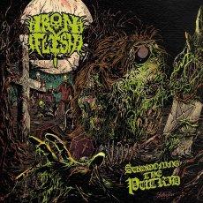 Troppe influenze varie rendono un po' dispersivo questo secondo album degli Iron Flesh