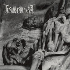 I Tetramorphe Impure rilasciano una raccolta con il demo d'esordio ed un EP