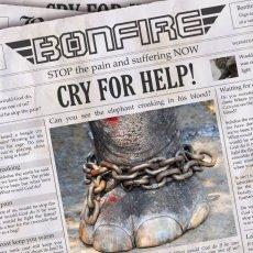 I tedeschi Bonfire a supporto del PETA